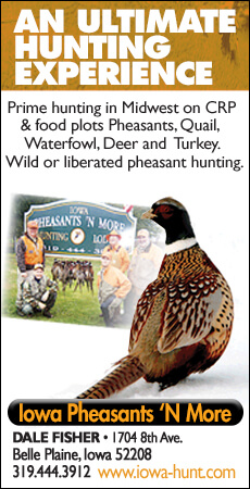 Iowa Pheasants and More