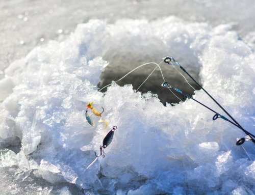 Raps for Trout: Strategies Through the Ice Using Hard Baits