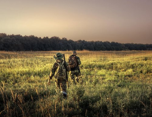 Whitetails 365: Septembers – Setting The Trap