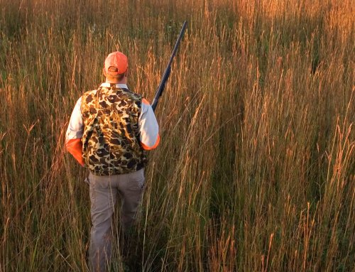10 Reasons we Love to Hunt