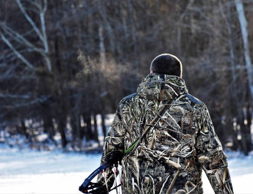 Whitetails 365: Buying Recreational Land, Part I