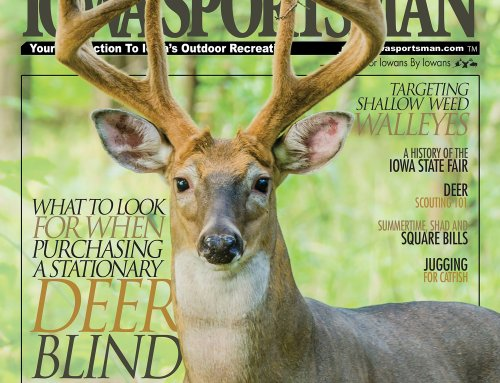 Check out our latest issue here!